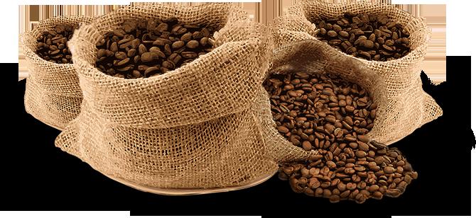 Cafe hạt